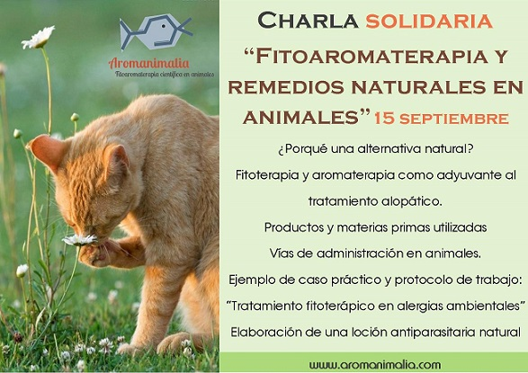 PublicaciónCharlaNeoPEKE