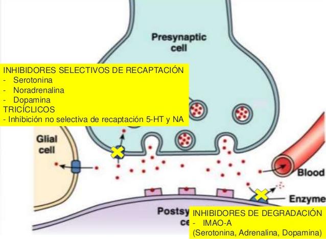 antidepresivos-26-0216-23-638