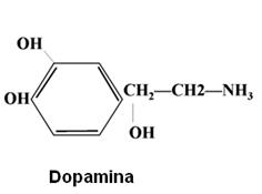 dopamina-e-serotonina